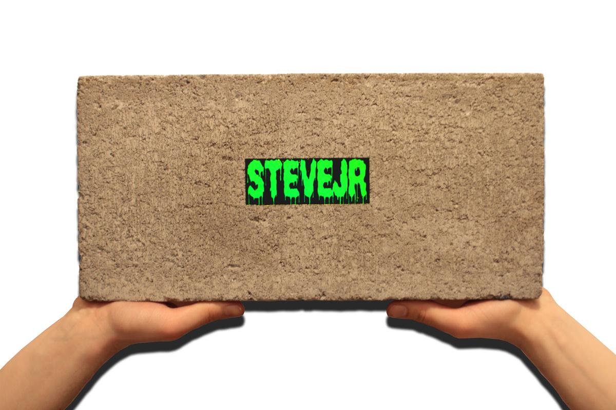 steve jr