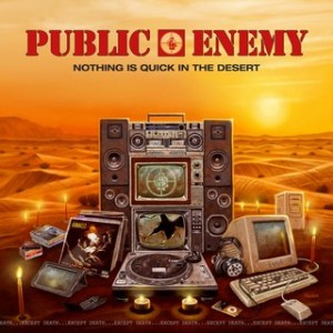 nothing is quick in the desert_public